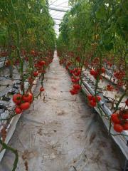 Субстрат минераловатный для выращивания клубники