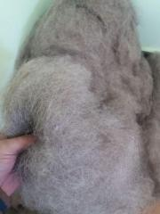 Влакна текстилни