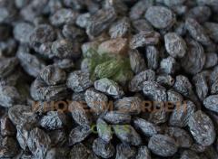 Изюм черный (солнечная сушка)