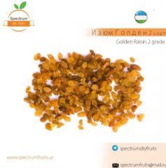 Изюм Голден 2 сорт Spectrum Dry Fruits