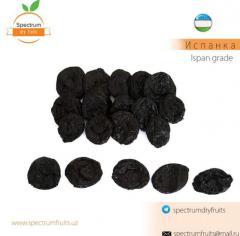 Чернослив сорт Испанка Spectrum Dry Fruits