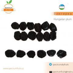 Чернослив сорт Вингерка Spectrum Dry Fruits
