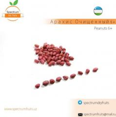 Арахис очищенный 6+ Spectrum Dry Fruits