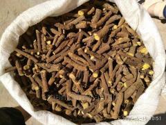 Корень солодки/Licorice Root