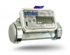 Счетчик газа ультразвуковой ПРИНЦ G-25
