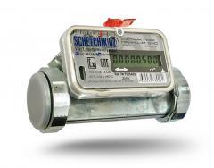 Счетчик газа ультразвуковой ПРИНЦ G-40