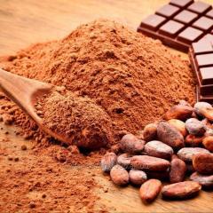 Alkalized Cocao Powder/ Алкализированный порошок какао