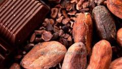 Black Cocao Powder/ Порошок черного какао