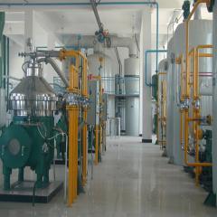 Оборудование для рафинации и дезодорирования 100 т/с
