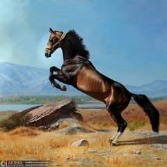 Картина Ахалтекинский Конь