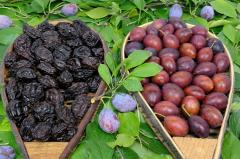 Prunes of different grades