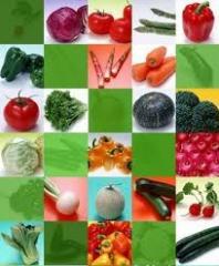 Пакетированные семена овощных культур