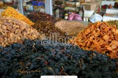 Agriculture. Fruit and vegetable cultures. Fruit dried. Dried fruits.