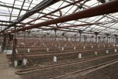 Greenhouse facilities