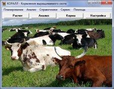 Препараты ферментные для животноводства