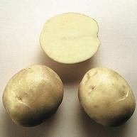 Сорт картофеля «Дельфин»