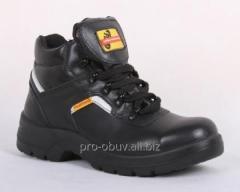Sapatos da proteccão