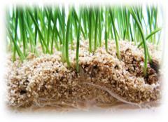 Вермикулит для сельского хозяйства