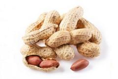 Peanut without shell