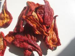 Paprika, sweet pepper!