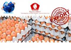 Egg 1,2 categories dietary