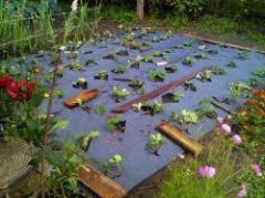 Agrotextiles - the nonwoven agrotextiles of own