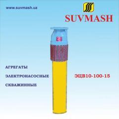 Units electric pump borehole ETsV10-100-15
