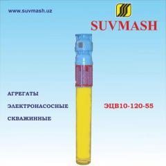 Units electric pump borehole ETsV10-120-55