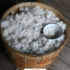 Cotton wool tyufyachny