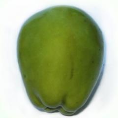 Apple green artificial-decorative