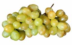 Grapes yellow decorative