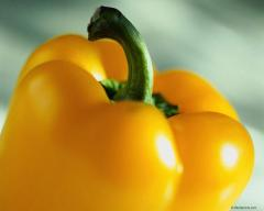 Yellow paprika artificial-decorative