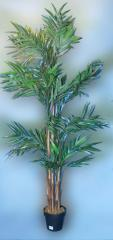 Palm tree date decorative