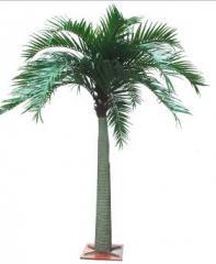 Palm trees decorative