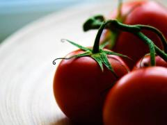 Tomatoes artificial-decorative