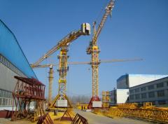 Rotary cranes