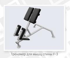 The exercise machine for muscles of a back F – 3