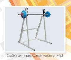 Rack for squat F – 22