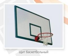 Basketball backboard (with a ring and a grid)