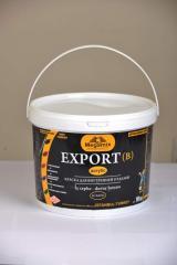 Paint for internal finishing of Megamix EXPORT (V)