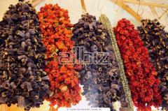 Berries dried