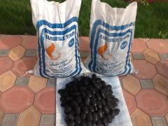 Coal briquettes from coal
