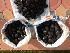 Elements coal
