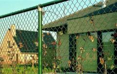 Сетка заборная рабица