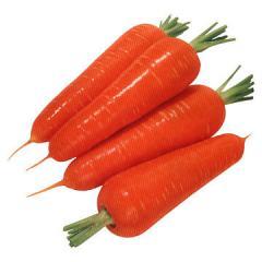 Семена красной моркови Curoda Chantenay