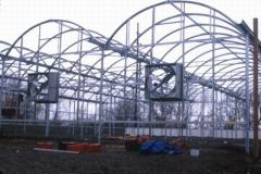 The fan for industrial greenhouses