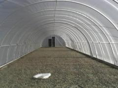 Films polyethylene for industrial greenhouses