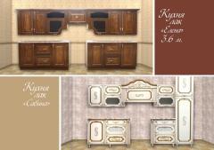 Kitchen font to Elena