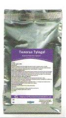 Antibacterial drug Tilogal