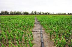 Agrowatering
